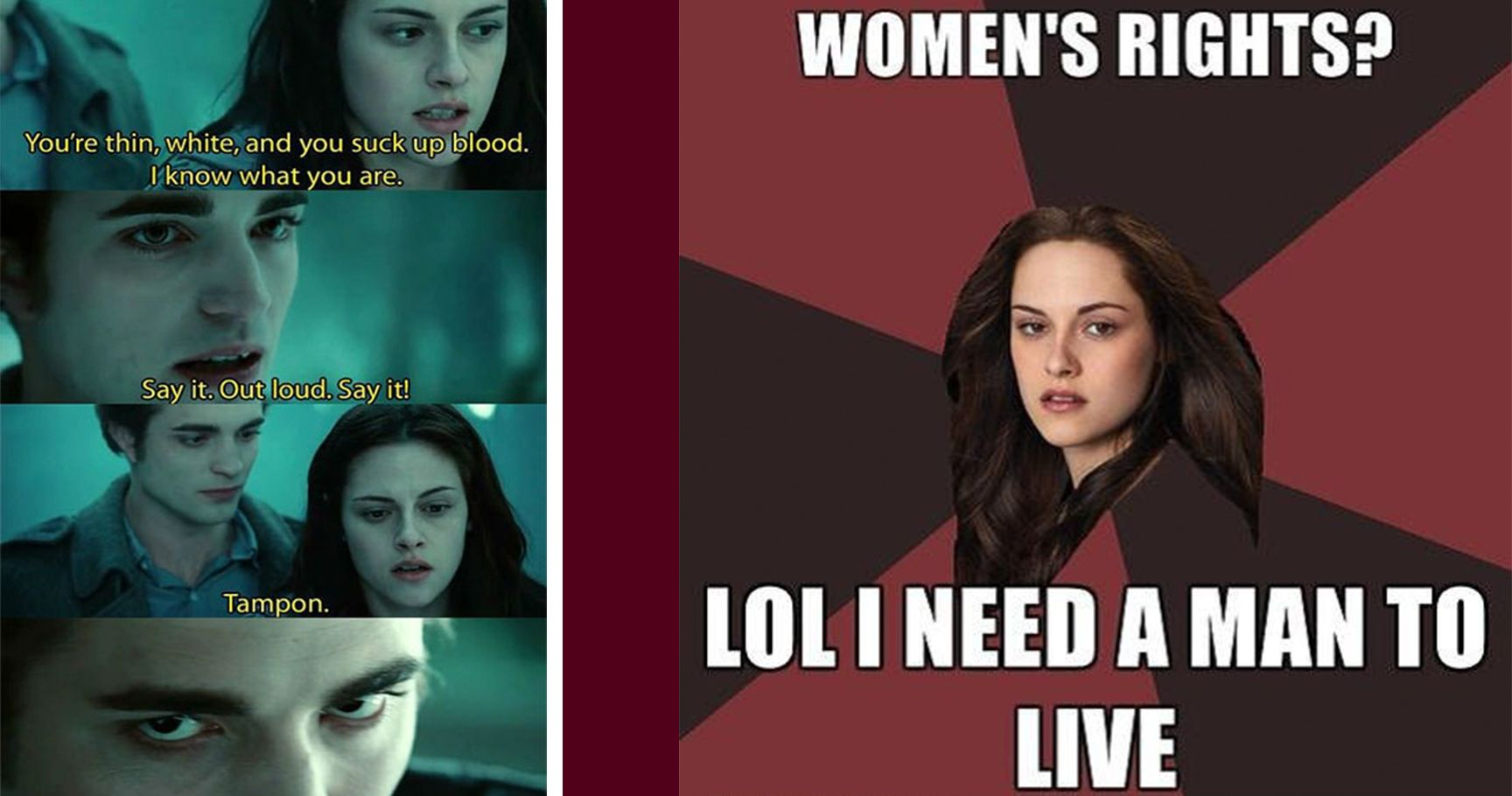 15 hilarious twilight memes that are actually better