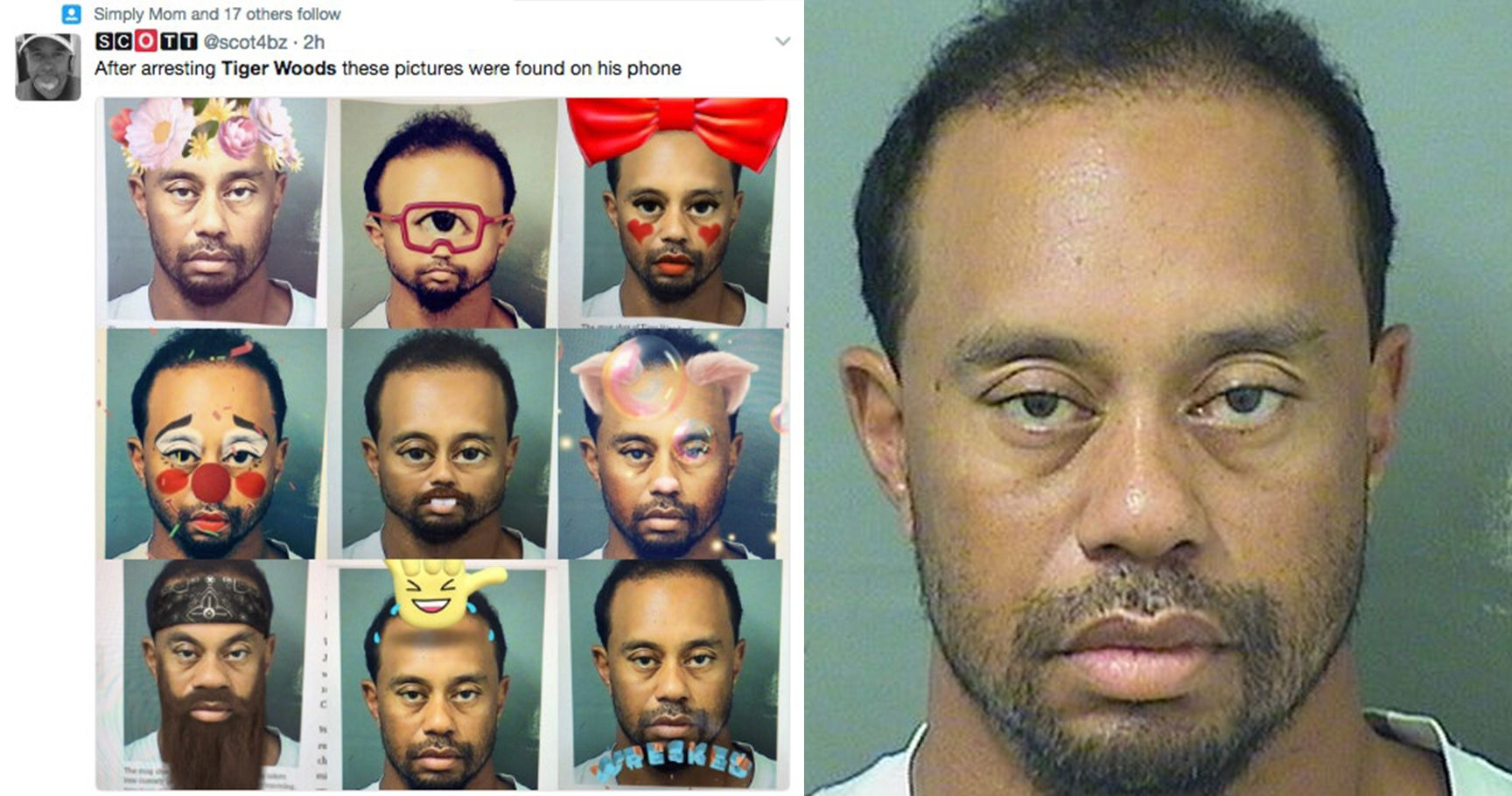the most inappropriate tiger woods memes following his dui