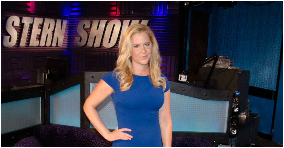 Why Amy Schumer Credits Howard Stern For Her Career | TheThings